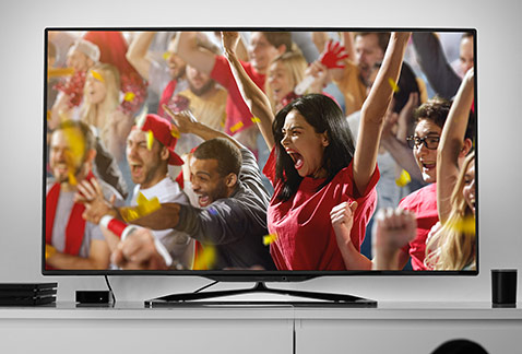 Fans on TV cheering at a sporting event